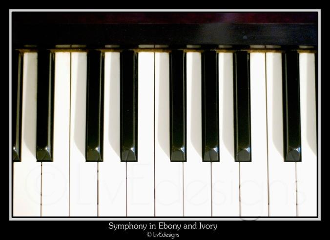 Symphony in Ebony & Ivory