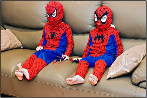 blog-spideys
